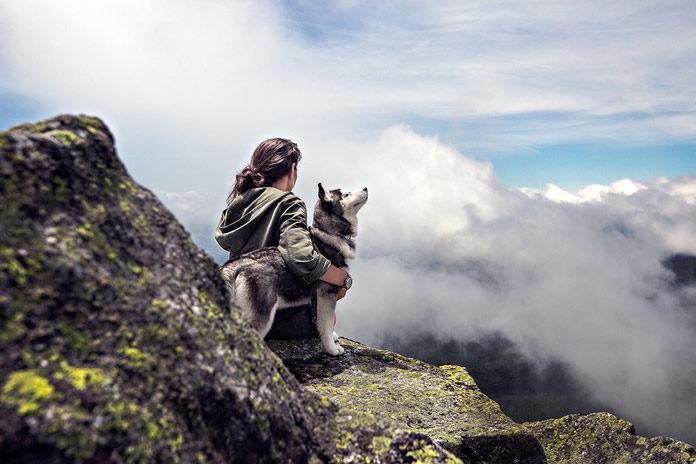 Animali domestici in viaggio - 100tour