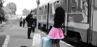 viaggiare animali treno cane - 100tour