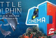 little-dolphin-zoomarine