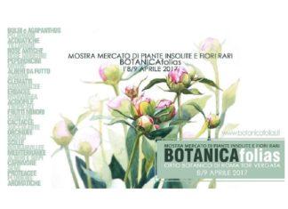 botanica folias eventi roma