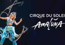 amaluna cirque du soleil roma