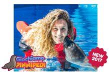 novità zoomarine 2017 giochiamo coi pinnipedi